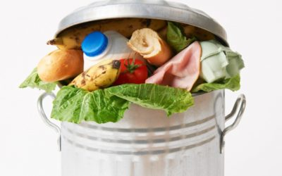 The Staggering Numbers Behind South Africa's Food Waste Problem